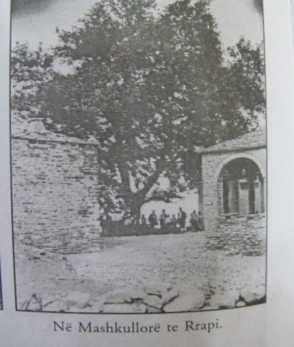 foto 7